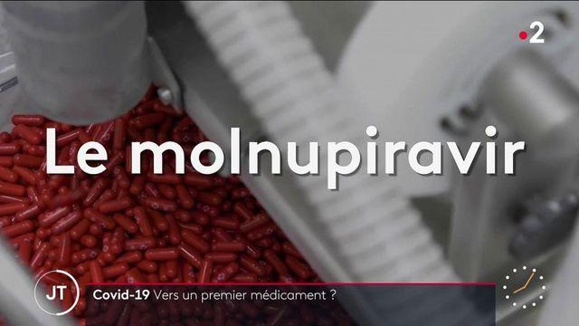 Covid-19 : le laboratoire Merck demande l'autorisation de son traitement, le Molnupiravir