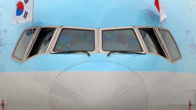 Un avion deKorean Air, transportant le président sud-coréen Lee Myung-Bak,arrive à l'aéroport de Tokyo (Japon), le 28 juin 2009. (TOSHIFUMI KITAMURA / AFP)