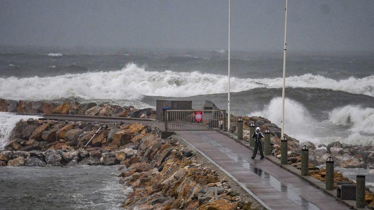 La tempête Gloria à Perpignan, le 21 janvier. (MICHEL CLEMENTZ / MAXPPP)