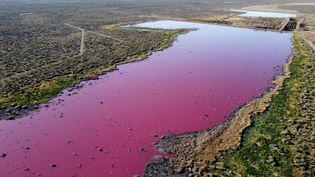 Une lagune à la teinte rosée, en Argentine, le 23 juillet 2021. (DANIEL FELDMAN / AFP)