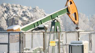 Un puits de pétrole Exxon Mobil, près de Brunswick, en Allemagne, le 18 janvier 2016. (JULIAN STRATENSCHULTE / DPA)