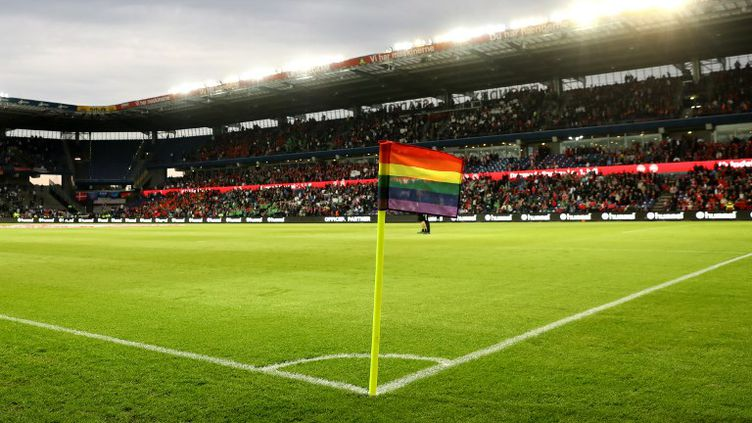 L'arbitre anglais Ryan Atkin s'attaque à l'homophobie.  (INA FASSBENDER / DPA)