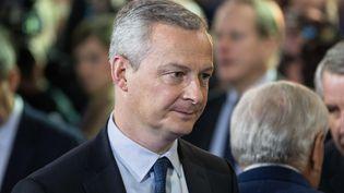 Bruno Le Maire, lors d'un meeting de François Fillon, le 29 janvier 2017, à Paris. (JULIEN MATTIA / NURPHOTO / AFP)