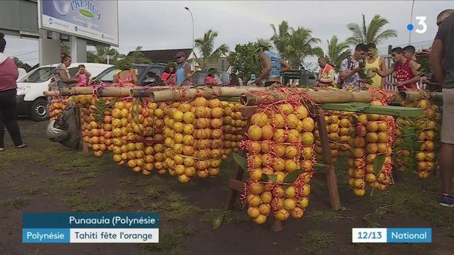 Polynésie : la cueillette des oranges, une tradition tahitienne