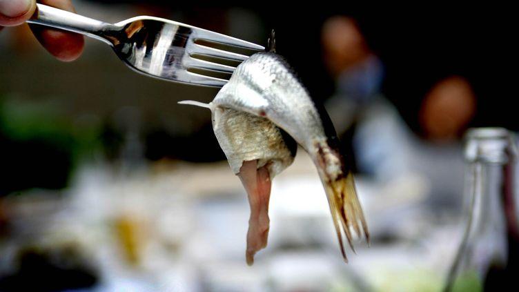 """Un expert suédois doit """"désamorcer"""", le 18 février 2014, une boîte de """"surströmming"""", du hareng fermenté, qui pourrait exploser après avoir été oubliée pendant près de vingt-cinq ans. (SCANPIX / REUTERS)"""
