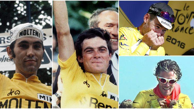 Eddy Merckx, Bernard Hinault, Mark Cavendish et Mario Cipollini