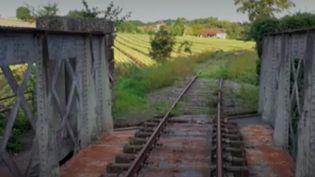 Transports : une coopérative ferroviaire veut relancer la ligne Bordeaux-Lyon (France Info)