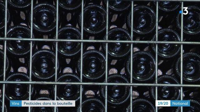 Vins : des pesticides et additifs retrouvés dans nos bouteilles