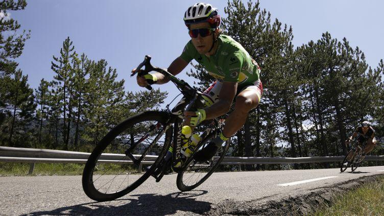 Peter Sagan, en pleine descente.  (KENZO TRIBOUILLARD / AFP)