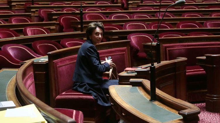 La ministredes Affaires sociales et de la Santé, Marisol Touraine, lors d'une session sur la réforme des retraites au Sénat, le 28 octobre 2013 à Paris. (JACQUES DEMARTHON / AFP)