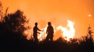 Un incendie, survenu mardi 20 août 2013, a brûlé 450 hectares sur l'île de Majorque, en Espagne. Mercredi, l'incendie était toujours hors de contrôle. (FRANCE 2 / FRANCETV INFO)