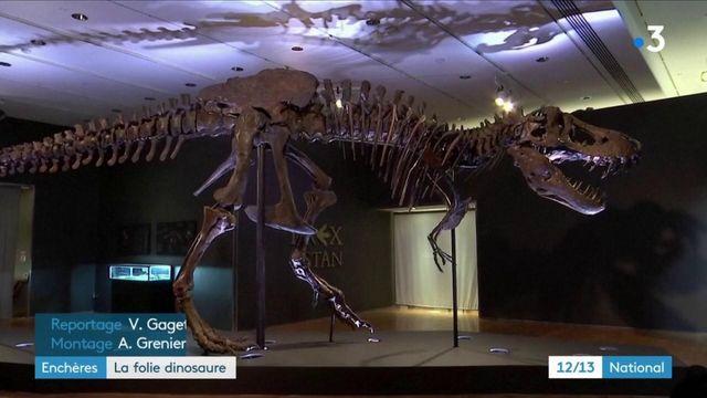 Dinosaure : le squelette de Big Sarah fait des envieux