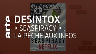 Désintox. « Seaspiracy » : les informations erronées du documentaire alertant sur l'état des mers. (ARTE/2P2L)