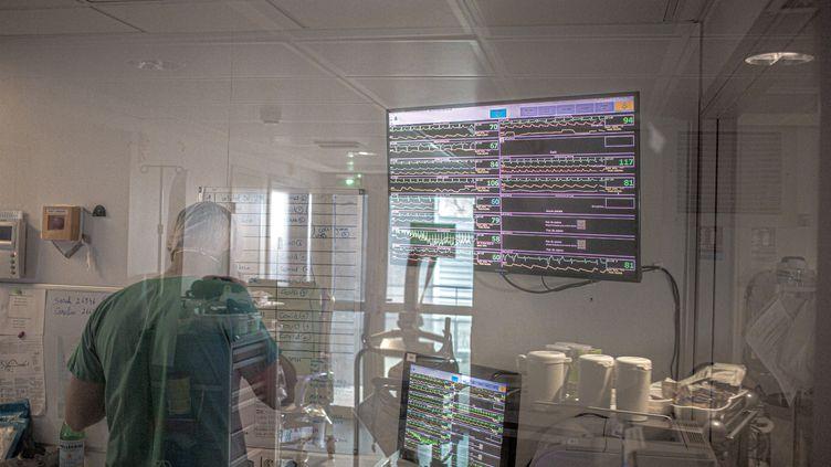 Dans une unité de soins intensifs au centre hospitalier de Perpignan (Pyrénées-Orientales), le 26 janvier 2021. (IDHIR BAHA / HANS LUCAS / AFP)