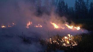 Incendies : de la Sibérie au Liban, l'été de tous les dangers (France 3)