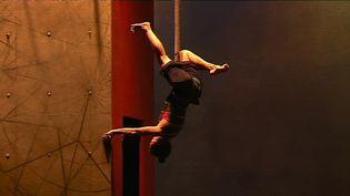 Vertikal, la dernière création de Mourad Merzouki sera présentée en première mondiale à Valence avant la Biennale de la danse de Lyon.  (France 3)