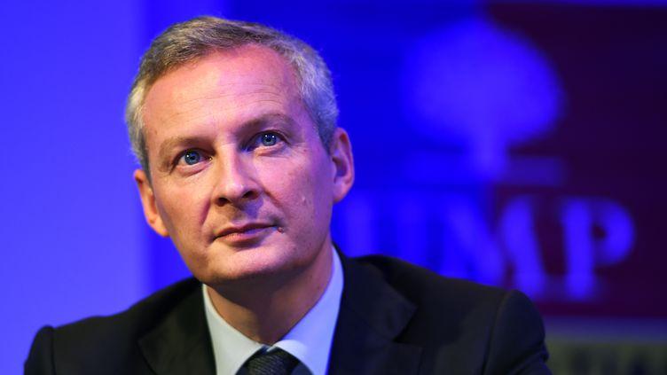 Le candidat à la présidence de l'UMP, Bruno Le Maire, lors d'un meeting de campagne à Marseille, le 13 novembre 2014. (ANNE-CHRISTINE POUJOULAT / AFP)