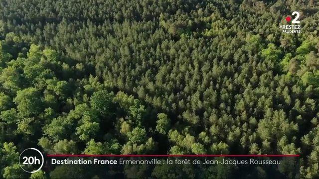 France : le charme de la forêt d'Ermenonville