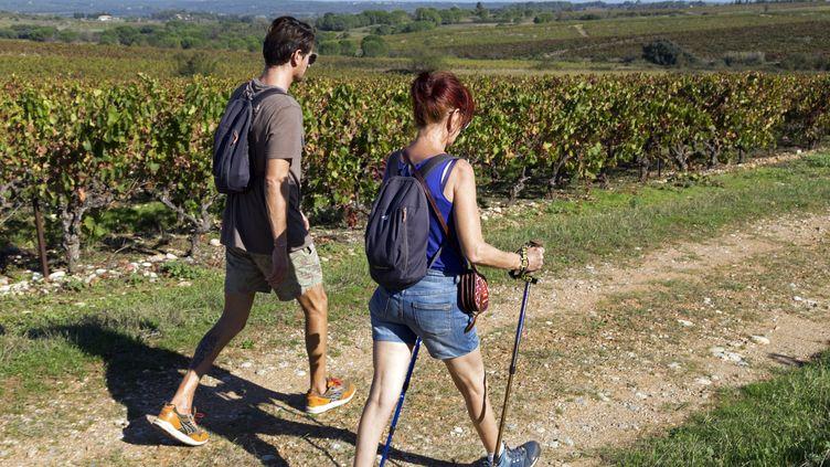 Randonnée au milieu des vignobles de Saint-Christol, dans l'Hérault. (JEAN-MARC LALLEMAND / MAXPPP)