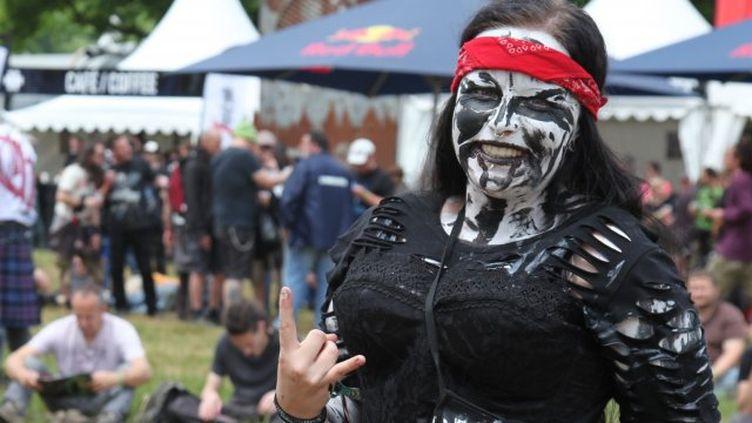 Le Hellfest à Clisson (Loire-Atlantique), en juin 2013. (FABIENNE BERANGER / FRANCE3 PAYS-DE-LA-LOIRE)