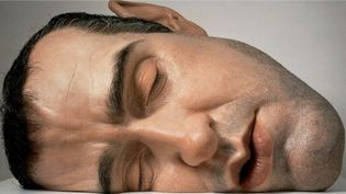 Ron Mueck : Mask II, 2002. Matériaux divers.   (Ron Mueck / Photo courtesy Anthony d' Offray, Londres.)