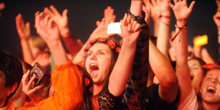 Des festivaliers des Vieilles Charrues, en 2015.  (FRED TANNEAU / AFP)