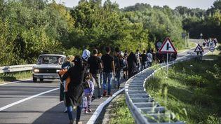 Des migrants sur la route menant à la frontière entre la Serbie et la Croatie à Bezdan (Serbie). (ARMEND NIMANI / AFP)