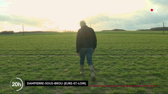 Agriculture : à quoi ressembleront les exploitations agricoles de demain ?
