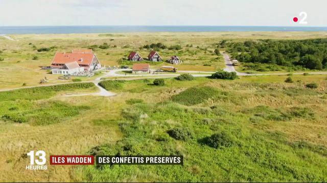 Pays-Bas : l'île de Vlieland, un écrin de verdure en mer du Nord