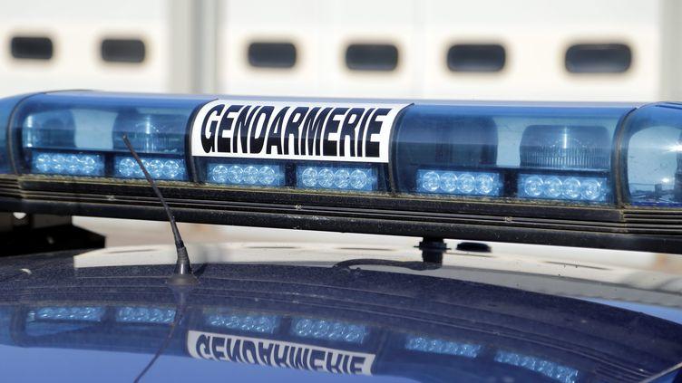 La section de recherche de la gendarmerie d'Angers a mené un vaste coup de filet permettant la saisie de 700 armes réparties dans 54 départements (image d'illustration). (SAMUEL COULON / MAXPPP)
