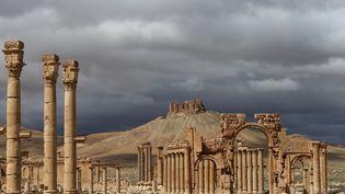 L'antique cité de Palmyre, en Syrie, le 14 mars 2014. (JOSEPH EID / AFP)