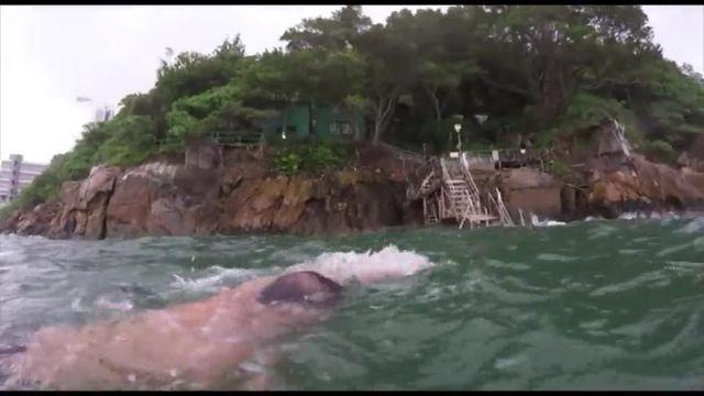 Hong-Kong : il n'y a pas d'âge pour nager dans le port