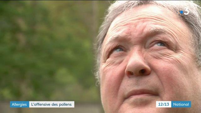 Santé : des Français de plus en plus allergiques aux pollens