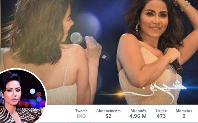Sherine Abdel Wahab compte plus de quatre millions de followers. Sur son compte, elle s'est sentie obligée de présenter des excuses pour ses propos sur l'eau du Nil. (DR)