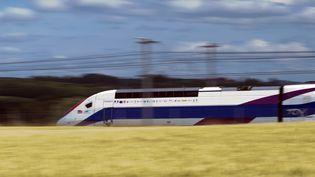 Un TGV passe entre Dijon et Besançon en juin 2011. Sur cette ligne, le train peut atteindre 320 km/h. (SEBASTIEN BOZON / AFP)