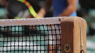 Sur le court Philippe Chatrier de Roland-Garros, à Paris, le 25 mai 2018. (THOMAS SAMSON / AFP)