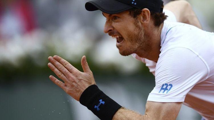 Andy Murray peste contre le gazon de Wimbledon (CHRISTOPHE SIMON / AFP)