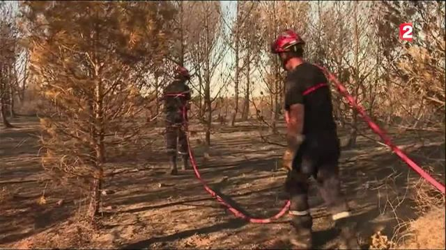 Incendie : une portion de l'autoroute A9 coupée