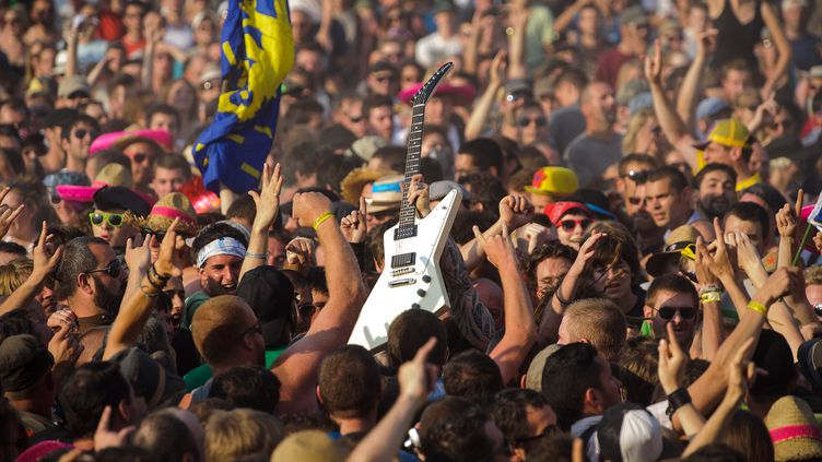 Le concert de Mass Hysteriai aux Eurockéennes de Belfort en 2013. (SEBASTIEN BOZON / AFP)