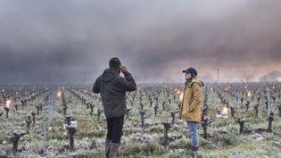 Des viticulteurs tentent de protéger leurs vignes du gel en allumant des feux en Loire Atlantique, le 12 avril 2021. (SEBASTIEN SALOM-GOMIS / AFP)