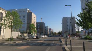 Le quartier du Mistral, à Grenoble (Isère), le 7 avril 2020. (MAXPPP)