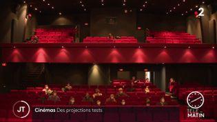 Au cinéma Les Carmes, à Orléans. (France 2)
