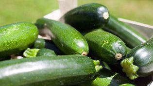 Les courgettes, un légume de saison à cuisiner de plusieurs manières. (Laurent Mariotte / Radio France)