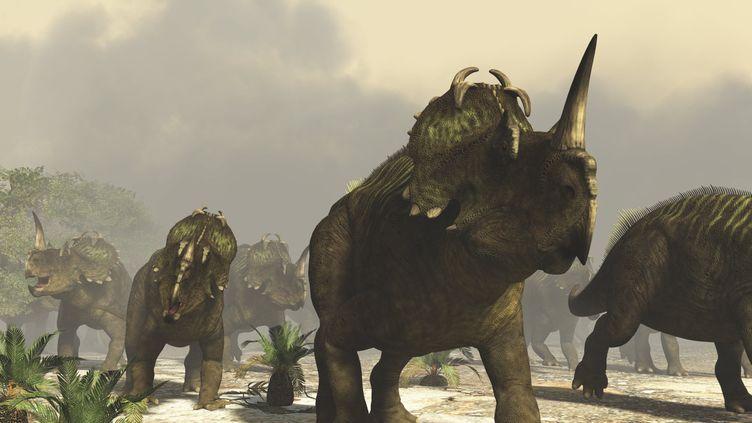 Lescentrosaures vivaient dans l'actuel Canada au Crétacé supérieur,il y a 76 à 77 millions d'années. (RAUL LUNIA / AFP)