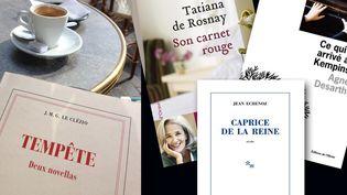 Echenoz, Tatiana de Rosnay, Le Clézio, les nouvelles fleurissent au printemps 2014  (Laurence Houot / Culturebox)