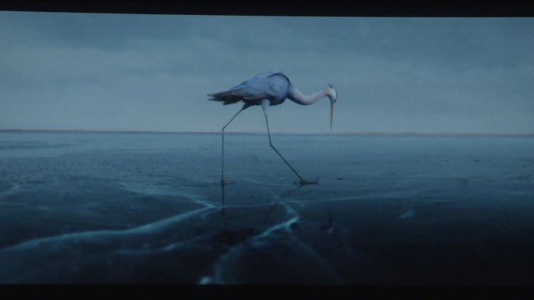 """""""Sous la glace"""", court-métrage projeté en ouverture du festival (Capture d'image / France télévisions)"""