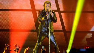 Johnny Hallyday en concert en 2013, année de ses 70 ans  (NICOLAS TUCAT / AFP)