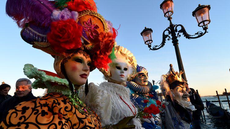 Le carnaval de Venise (Italie) bat son plein, le 3 février 2013. (VINCENZO PINTO / AFP)