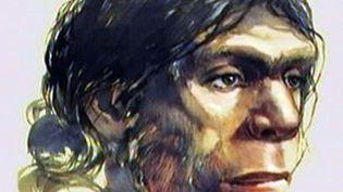Un hominidé, ancêtre de l'humanité (attention il ne s'agit pas de l'hominidé de Denisova). (France 2)