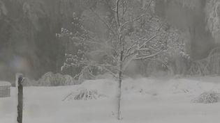 Mercredi 15 mai, de la neige a été observée en Corse, dès 900 mètres d'altitude. (FRANCE 2)
